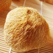 猴头菌东北野生猴头菇